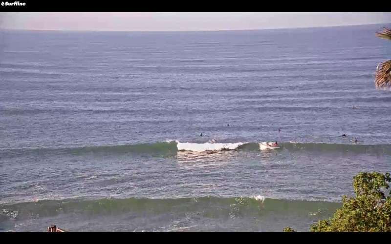 Look who was a SurfLine star this morning! @[[453:contact:azukiBEAN]]